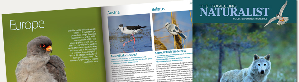 Example pages from our latest brochure
